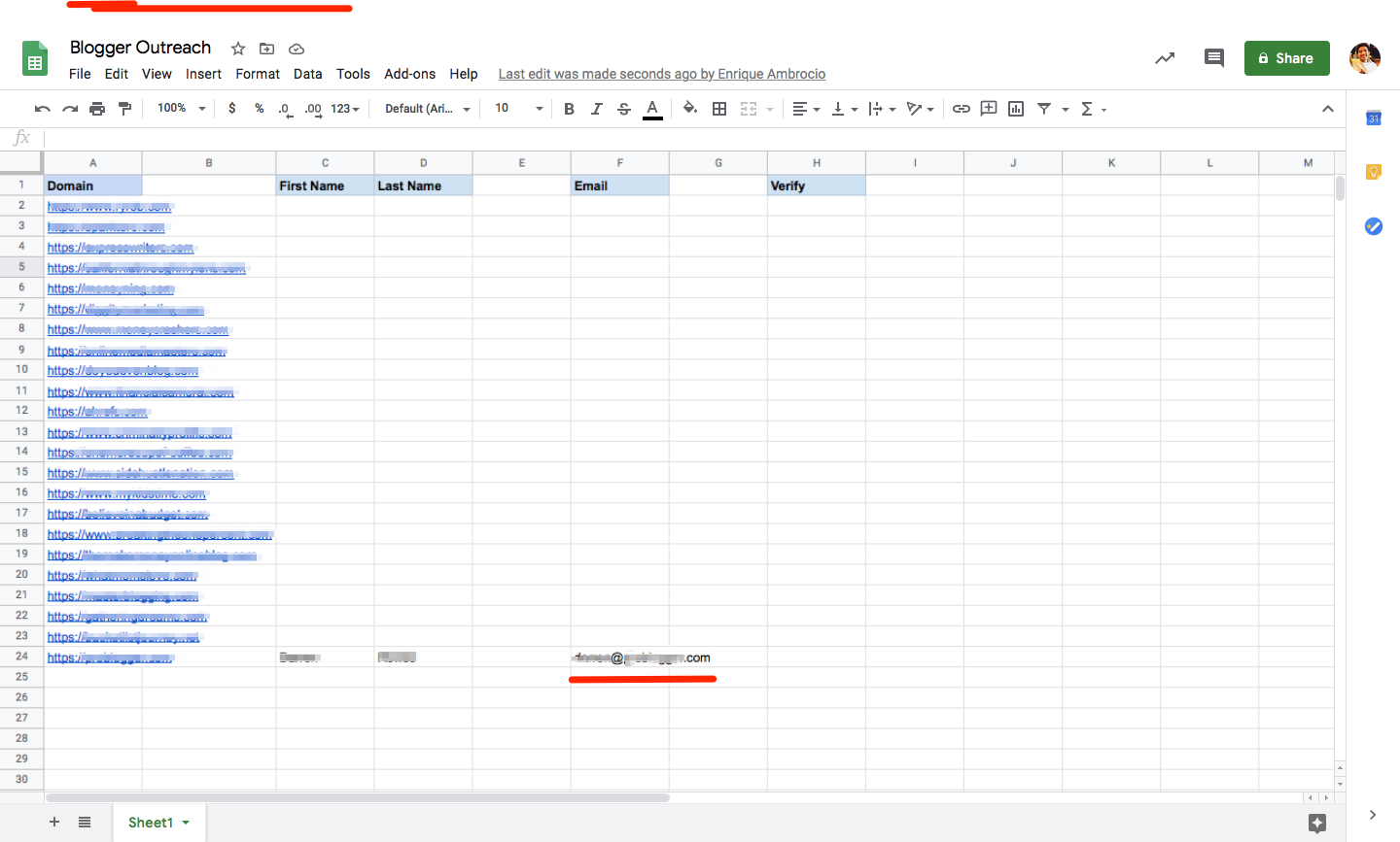 A spreadsheet with columns for domain, first name, last name, email, and verify, with a new email entered in one row.